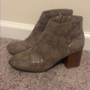MIA Shoes - MIA Snakeskin booties